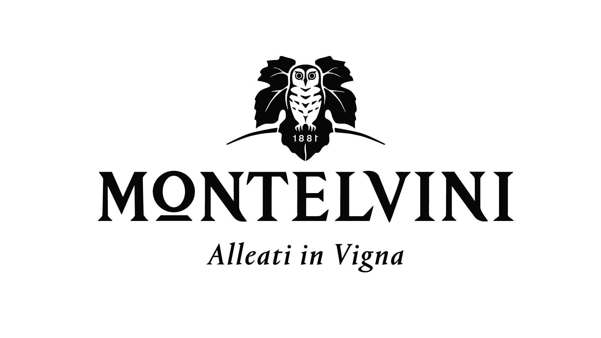sponsor di street food garden Montelvini